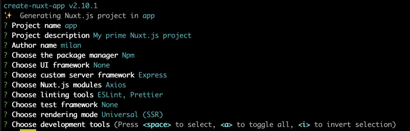 Nuxt install